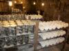 caves roquefort